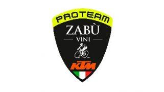 Proyectos-Vini-2020